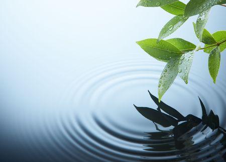 water ripple on a rainy day Stock Photo - 2924085
