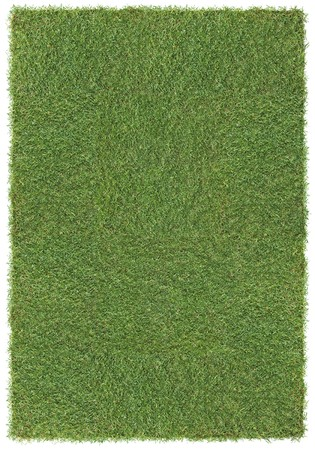 very large piece of grass, isolated background Stock Photo - 4403296