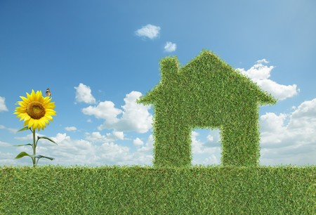 green grass house with sunflower and butterfly beside Stock Photo - 4437656