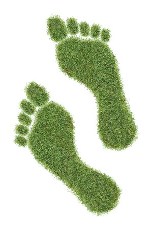 green footprint: grass footprint isolated on white, nature walk