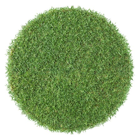 piece of round shape grass isolated as background Stock Photo - 4550302