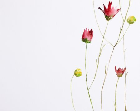 watercolor flower: watercolor painting of flowers with copy space, painted by my own