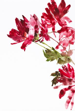 watercolour: watercolor painting of flowers, use as background Stock Photo