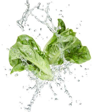fresh vegetables with water splash on white background