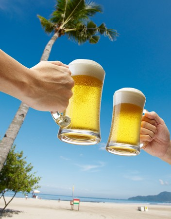 two hands holding beers toasting on beach Stock Photo - 6960159