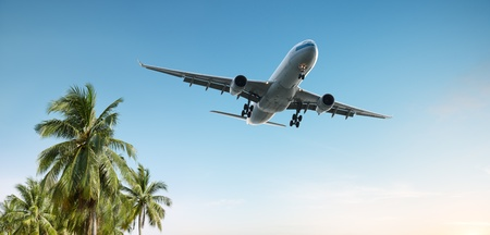 landing: airplane flying over tropical palm trees