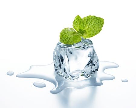cubetti di ghiaccio: cubetto di ghiaccio con foglie di menta su di esso Archivio Fotografico