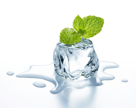 melting ice: ice cube with mint leaves on it