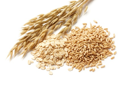 oats  avena  with its processed and unprocessed grains photo