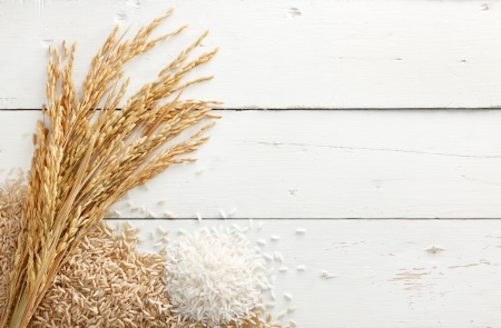 paddy with brown rice and white rice against white wood background Stok Fotoğraf