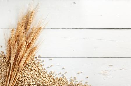 tarwe oren met tarwe korrels tegen witte hout achtergrond Stockfoto