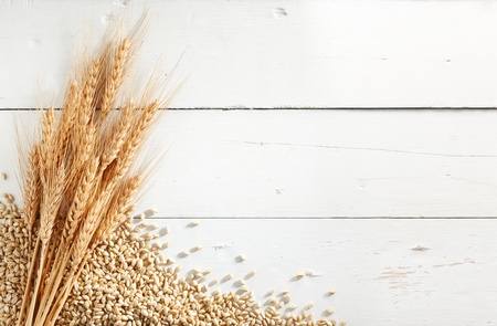 wheat ears with wheat kernels against white wood background Stok Fotoğraf