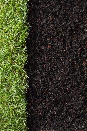 groen gras met grond als natuur achtergrond