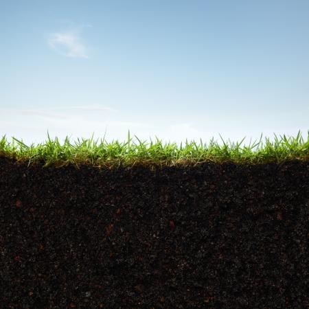 soil: sezione trasversale di erba e terra contro il cielo blu Archivio Fotografico