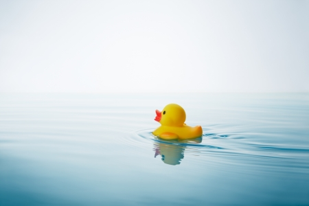 yellow rubber duck swimming on water with waves and ripples Stok Fotoğraf