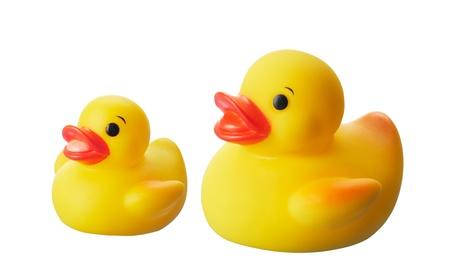 pato de hule: dos patos de goma amarillos aislados en el fondo blanco Foto de archivo
