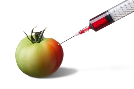 forcing: syringe injecting on unripe tomato forcing it to ripe faster