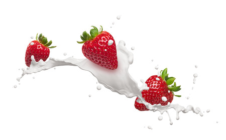 fresa: salpicaduras de leche con fresas aisladas en blanco Foto de archivo