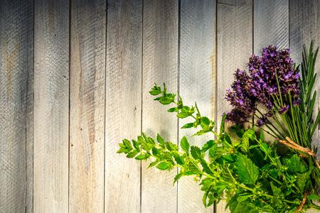 plantas medicinales: Hierbas frescas en una mesa de madera