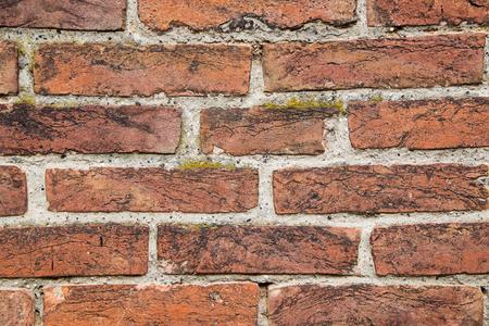 weathered: Weathered brick wall