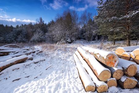 Winter landscape covered with fresh snow Reklamní fotografie