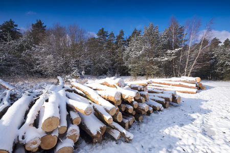 Winter landscape with fresh snow Reklamní fotografie