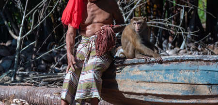 macaque that is tethered to work cruelly in Asia Stock fotó