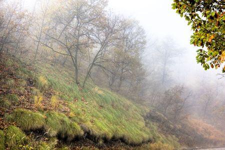 Foggy morning in the Almajului Mountains, Romania. Stock Photo - 3758009