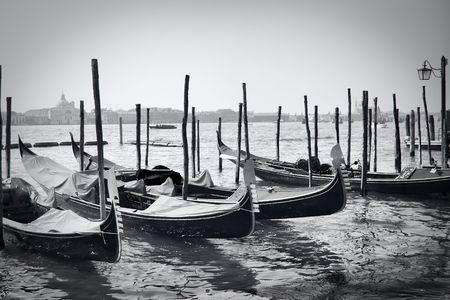 Parked gondolas in Venice, Italy