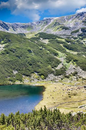 lia: Slaveiu Ridge and Lia Lake in Retezat Mountains, Romania. Stock Photo
