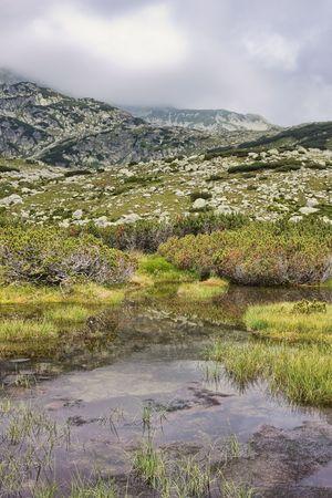 lia: Landscape in Retezat Mountains, close to Lia Lake.