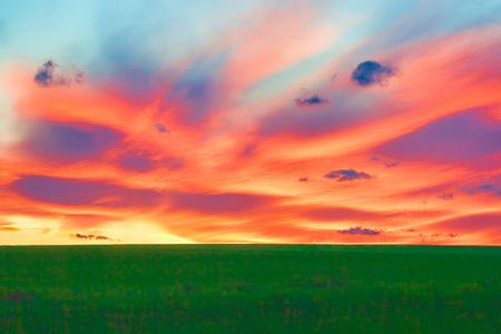 Sunset over a grain field photo