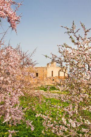 theologian: Monastery of St. John Theologian at Ancient Aptera in Crete, Greece