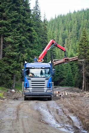 carpathian: Truck loading cut wood in the Carpathian Mountains, Romania Stock Photo