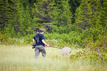 bog: Biologist exploring a bog in Cindrel Mountains in Romania. Stock Photo