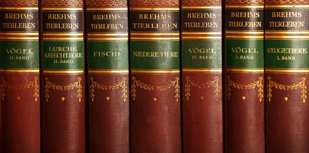 Row of old books about nature and other sciences in german. photo