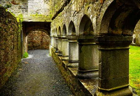 Interior of the Ross Friary in summertime on a rainy overcast day, Ireland. photo