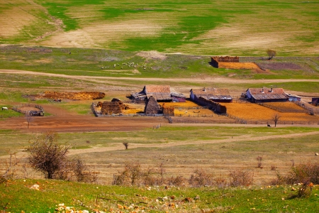 Traditional Romanian sheepfold in Dobrogea region during springtime. photo