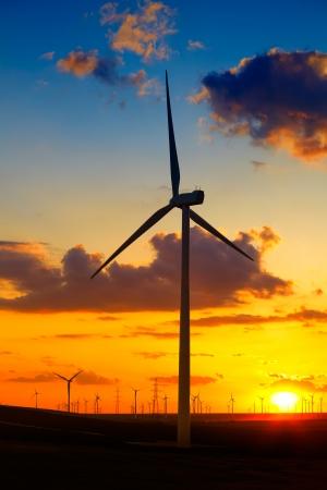 eolian: Wind turbines farm at sunset in Dobrogea region of Romania.
