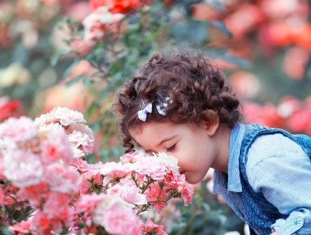 Portrait of a two year old little girl outdoor in a rose garden smelling the flowers.