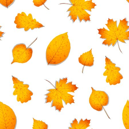 Seamless pattern of autumn leaves such as the walnut, oak, birch, linden and maple. Vector illustration in yellow and orange colors. Vettoriali