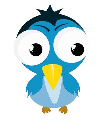aves caricatura: vector de la historieta del pájaro divertido