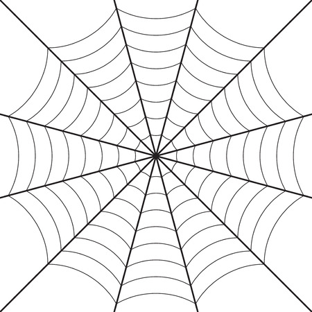 spinnenweb ontwerp