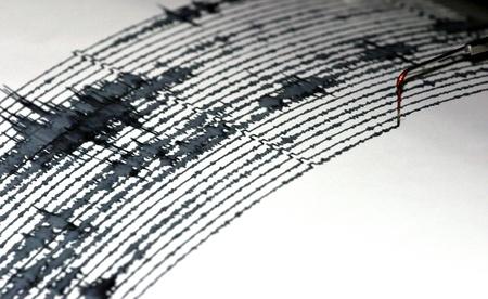 Sismogramma, registrazione visiva dei terremoti e l'attivit� sismica Archivio Fotografico