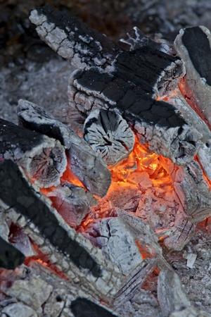 log fire: Log fuoco caldo