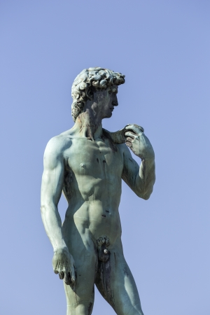 naked statue: Statue of David, located in Micheal Angelo Park Florence, Italy