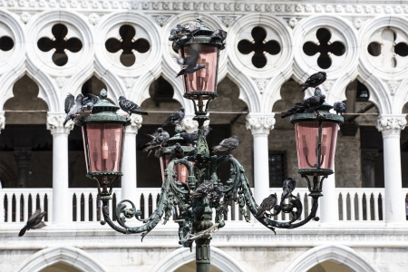 patriarchal: The Patriarchal Cathedral Basilica of Saint Mark at the Piazza San Marco - St Mark