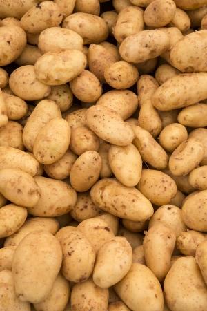 potatos: Macro view of fresh potatos