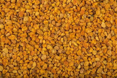 Fresh polline d'api