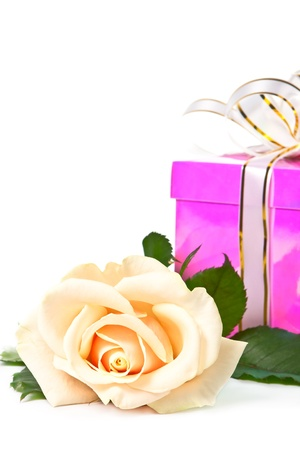 Light cream roses and pink gift close-up. photo